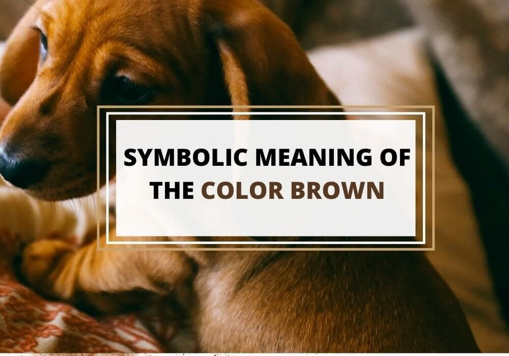 Brown color symbolic meaning
