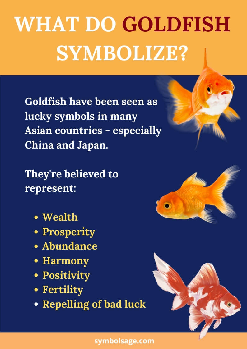 Goldfish meaning and symbolism