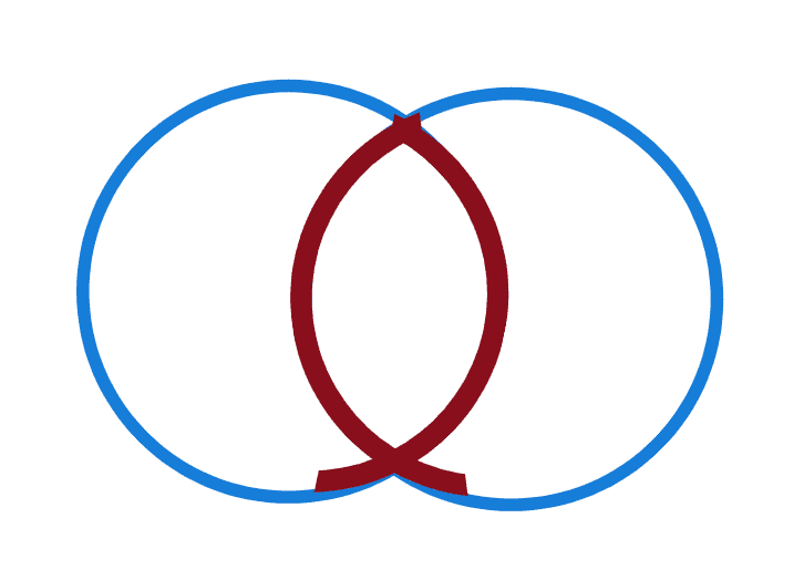 icthys in vesica pisces symbol