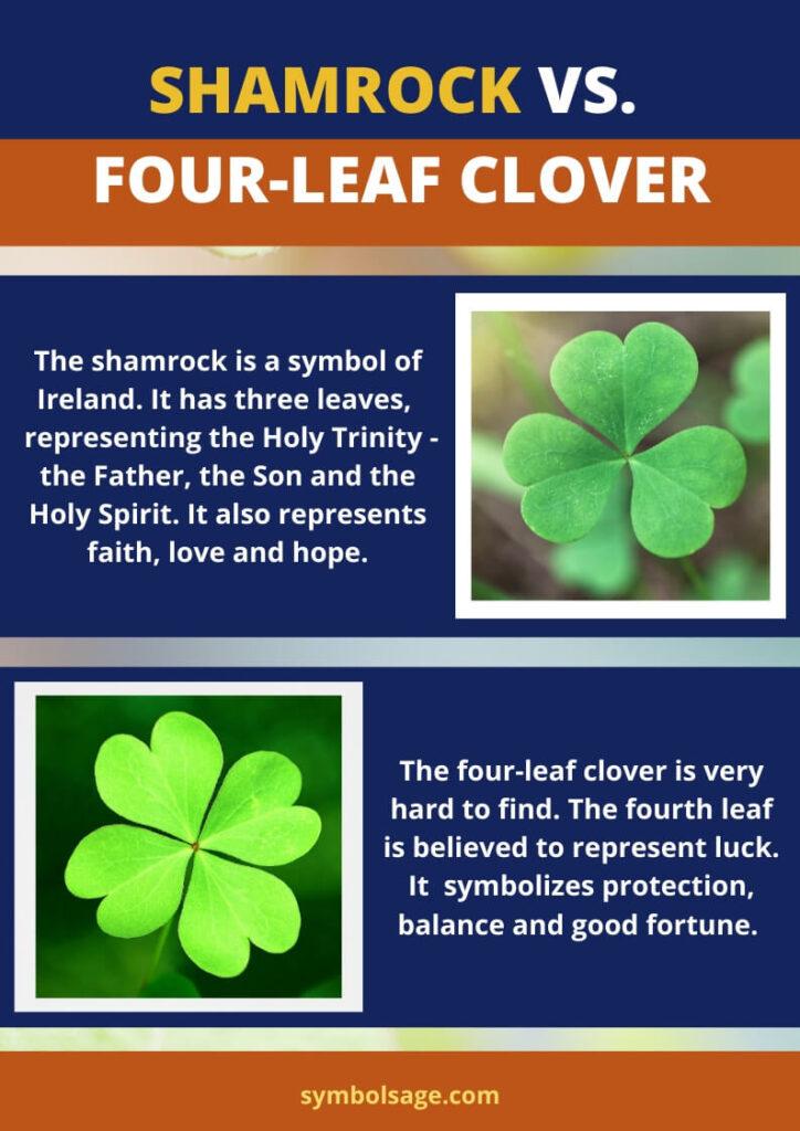Shamrock vs. four leaf clover