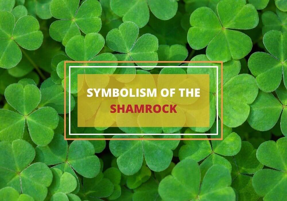 Symbolism of shamrock