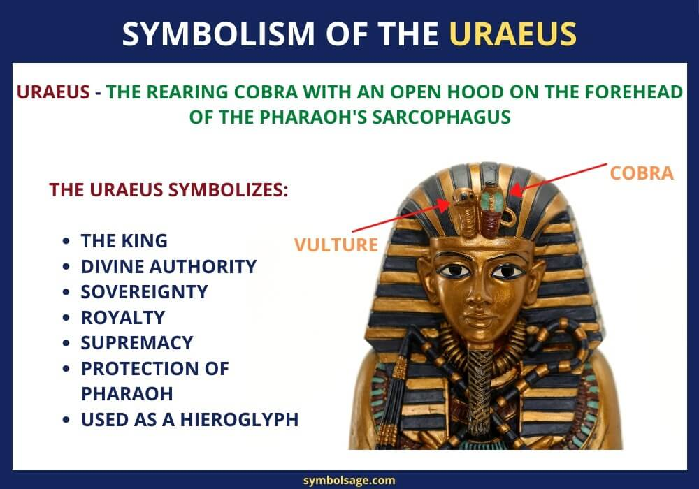 What is the Egyptian uraeus