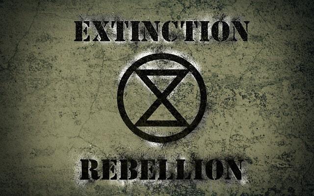 Extinction rebellion flag
