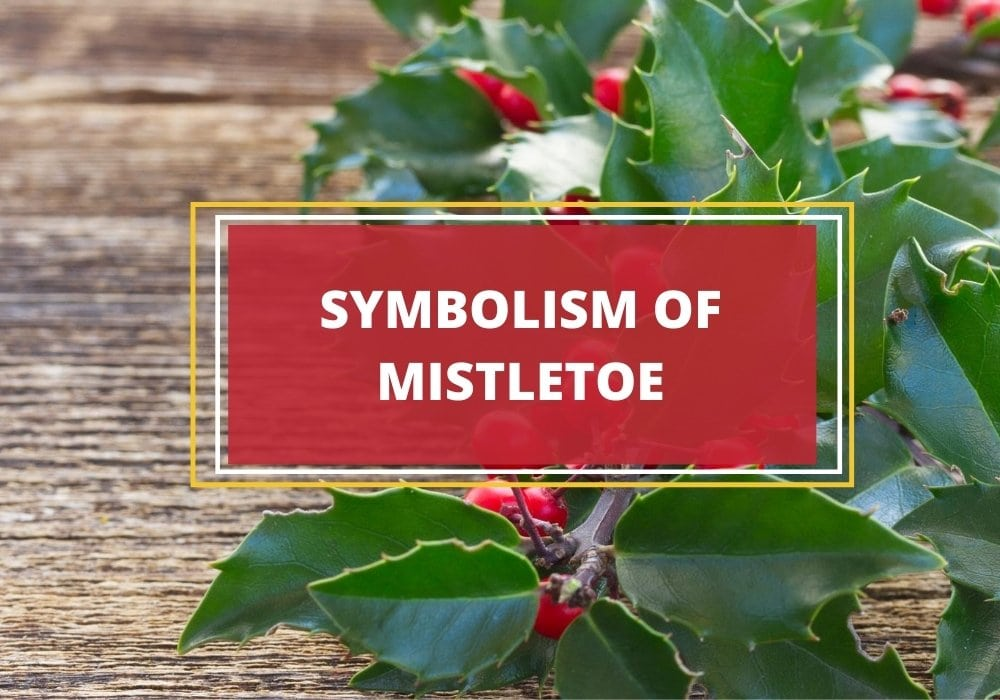 Mistletoe symbolism and meaning