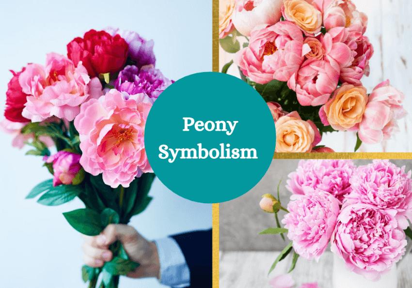 Peony symbolism