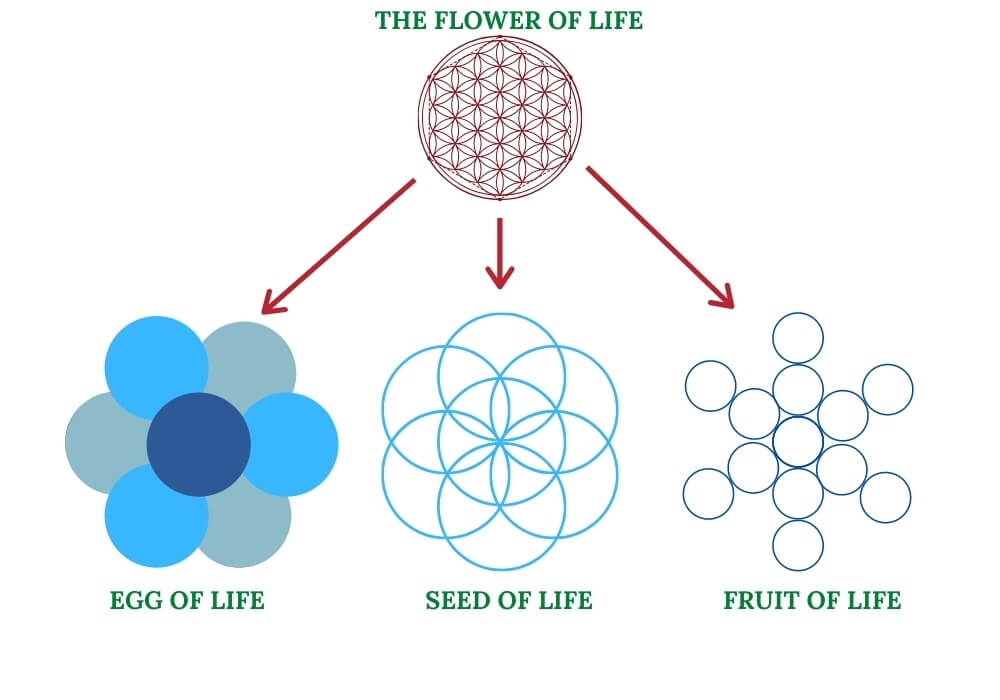 Seed of life flower of life fruit of life