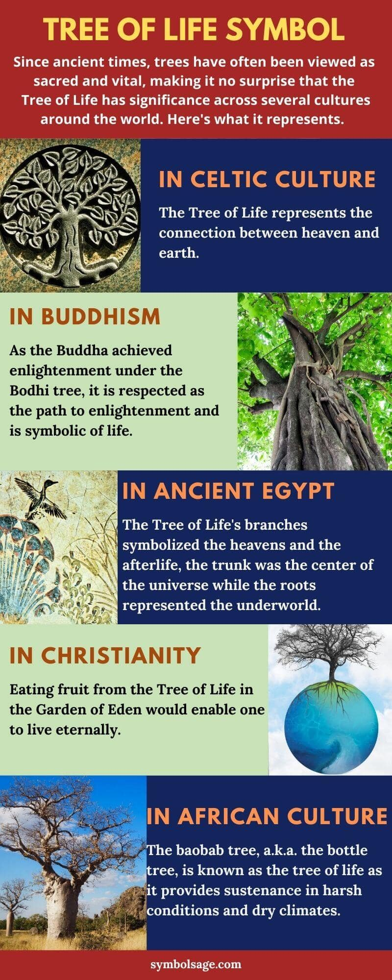 Tree of life symbol meaning in different cultures