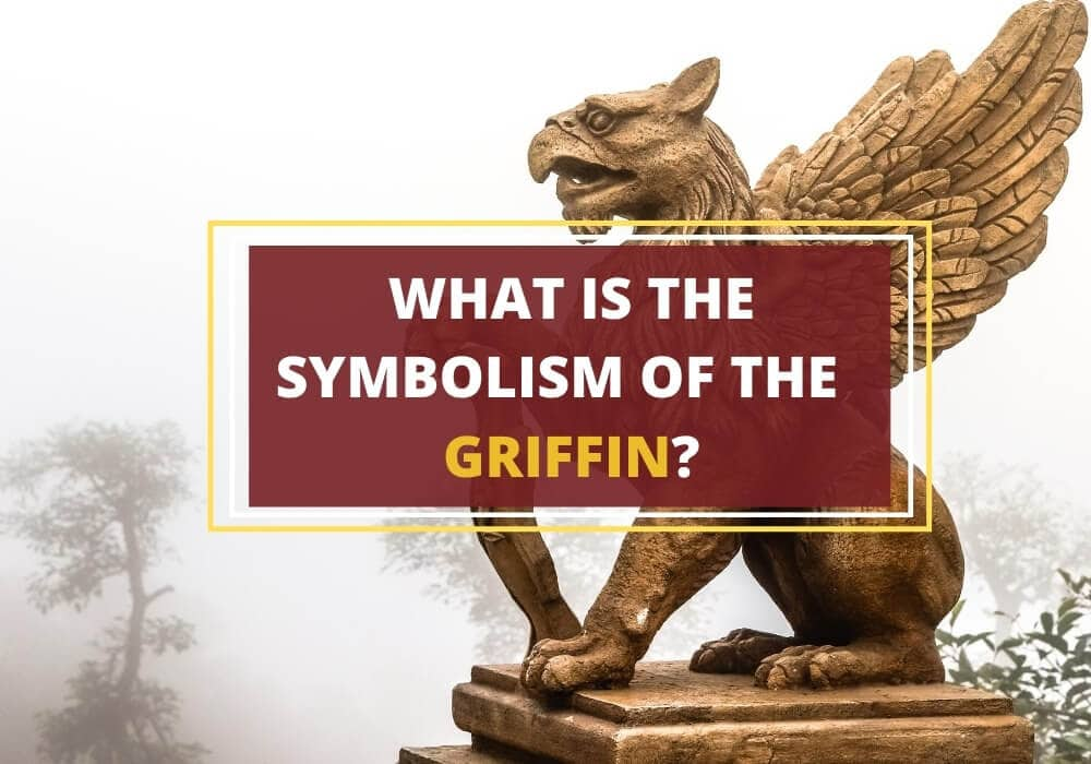 What is the griffin