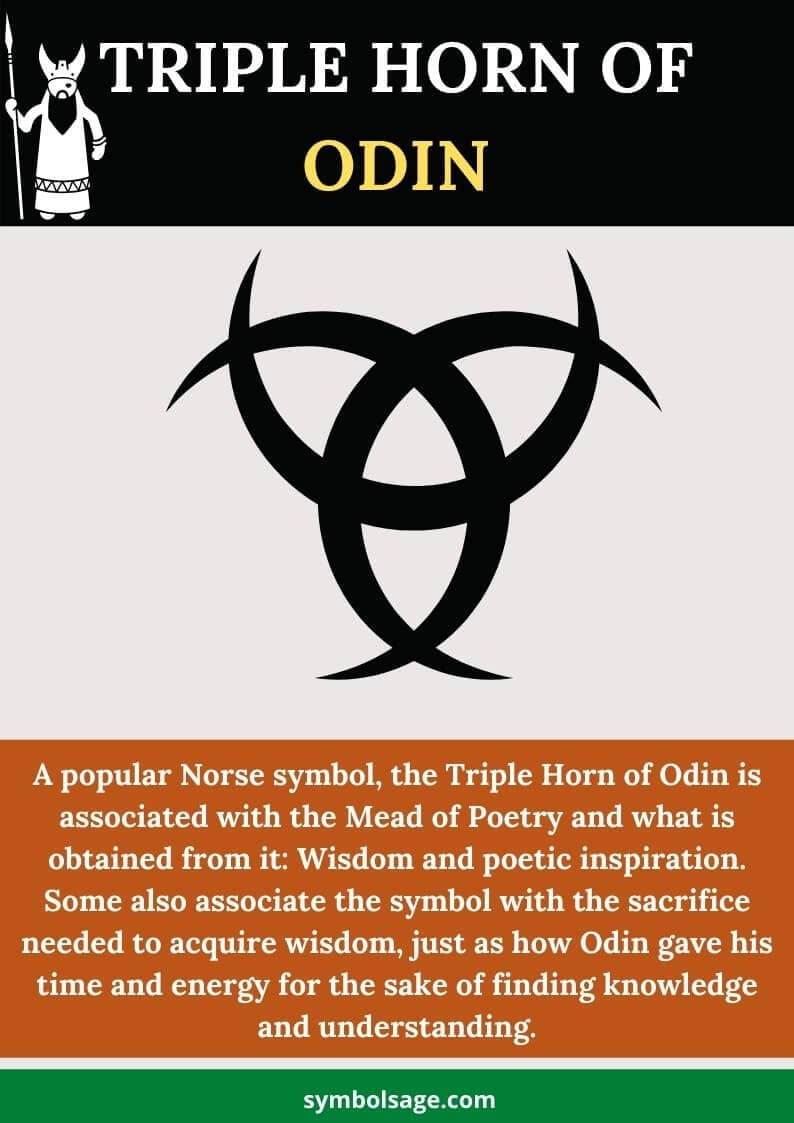 What is the horn of odin