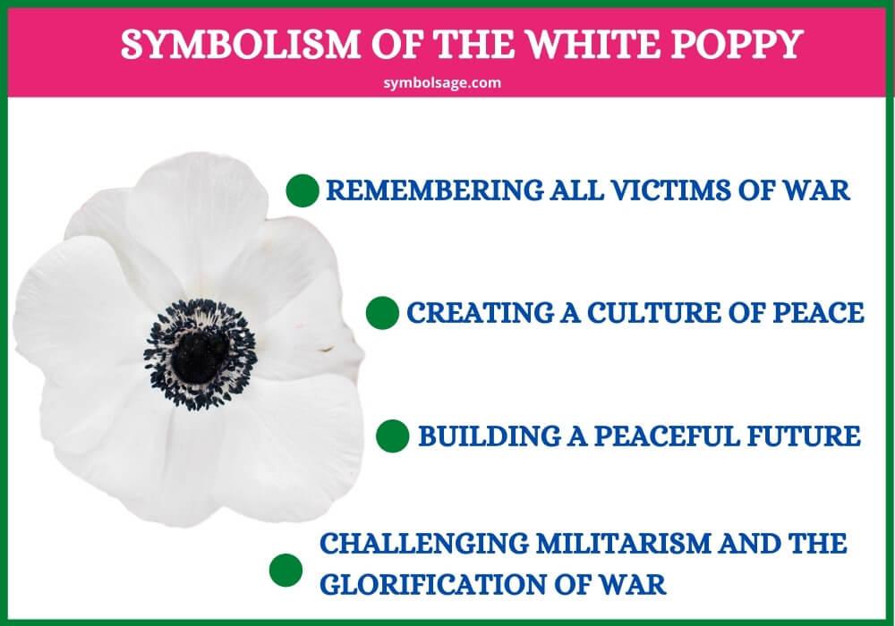 White poppy flower significance