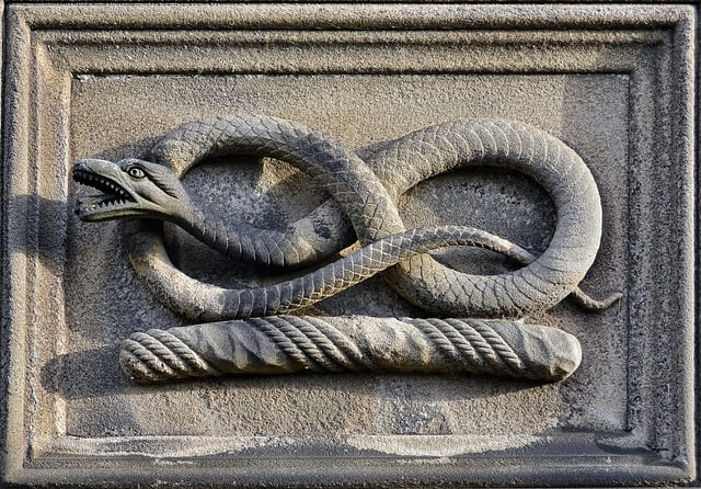 dreaming of serpent symbolism