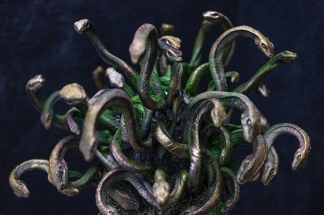 Gorgons head of snake
