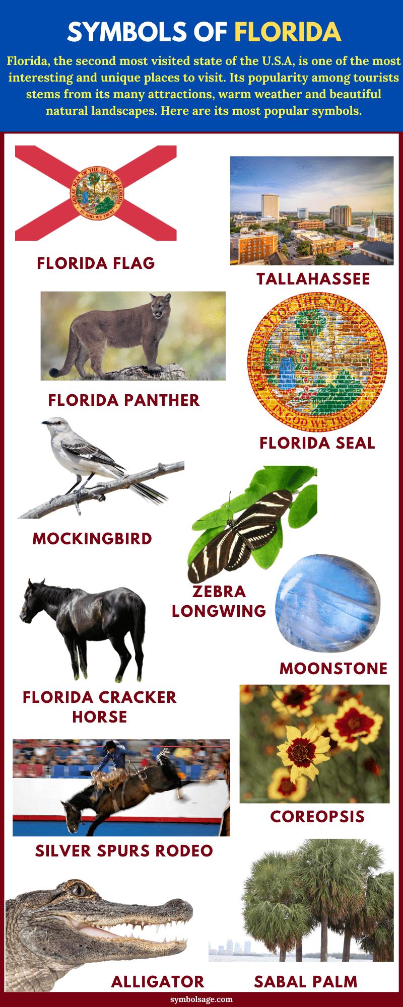 List of Florida symbols