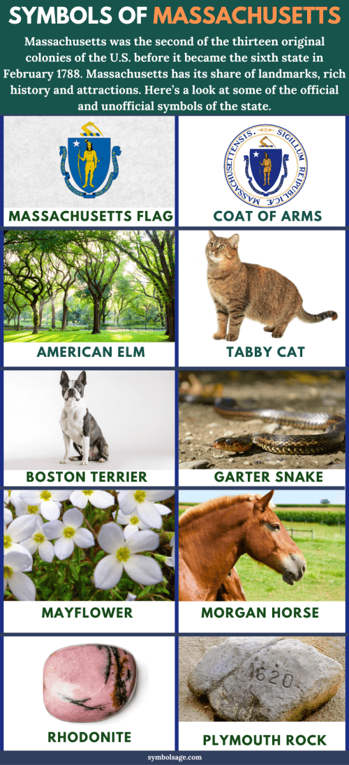 Massachusetts symbols and meaning