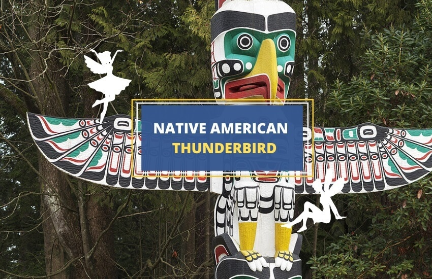 Native american thunderbird