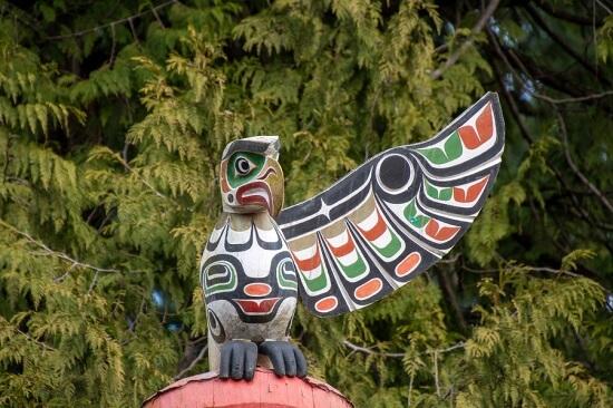 Native american thunder bird
