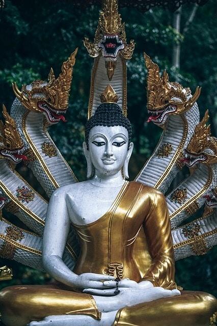 Snakes protecting Buddha