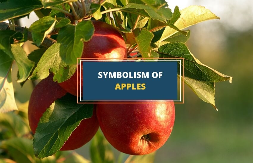 Symbolic meaning of apples