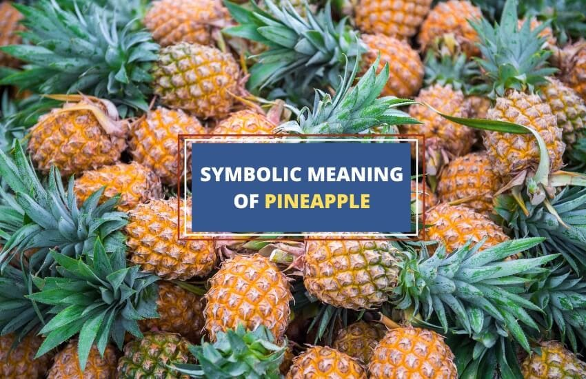 Symbolic meaning of pineapple