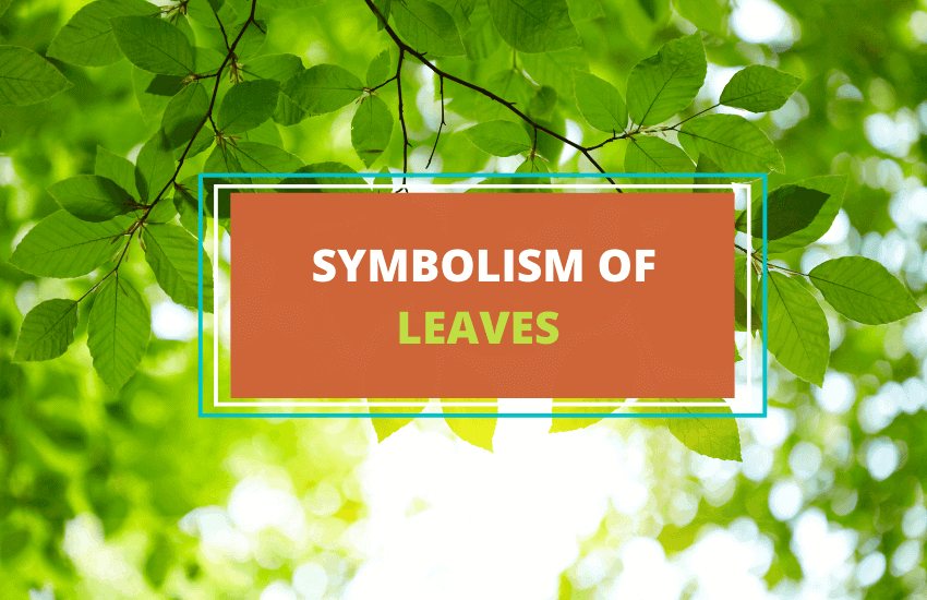 Symbolism of leaves