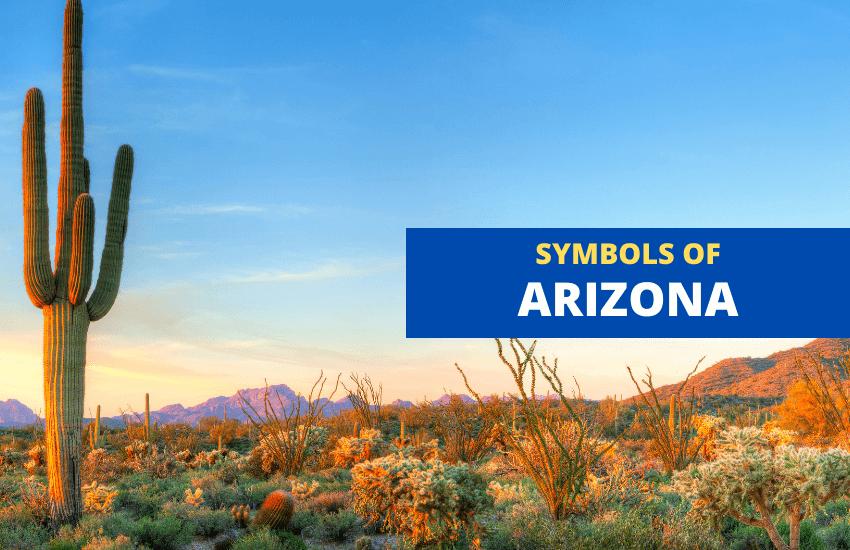 Symbols of Arizona