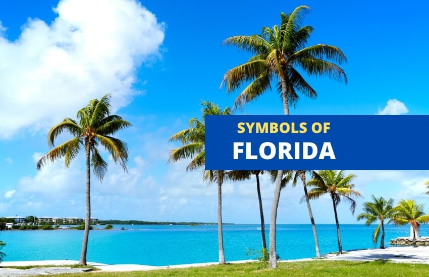 Symbols of Florida