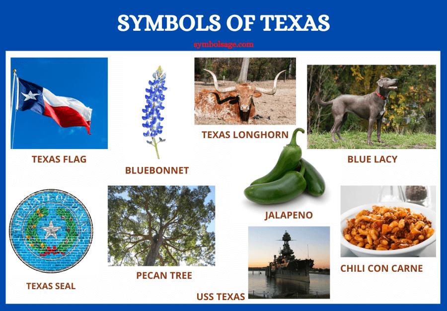 Symbols of Texas list