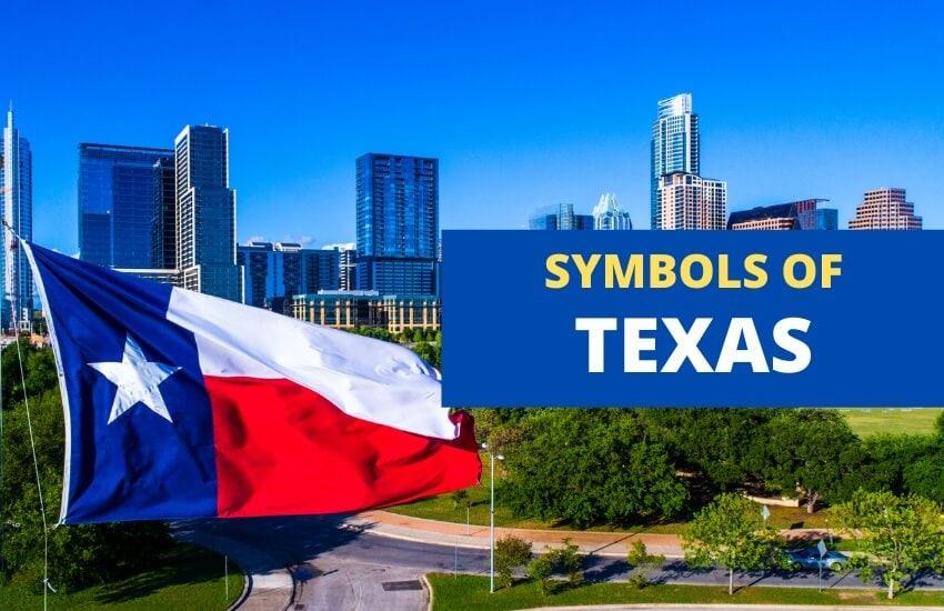 Texas symbol