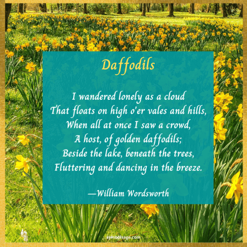 Daffodil poem