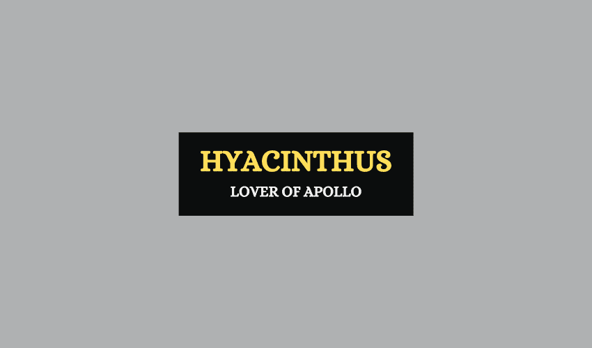 Hyacinthus Greek mythology