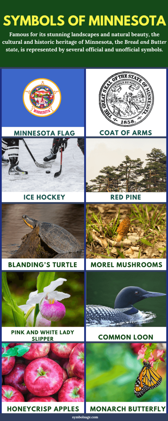 Minnesota symbols and meaning