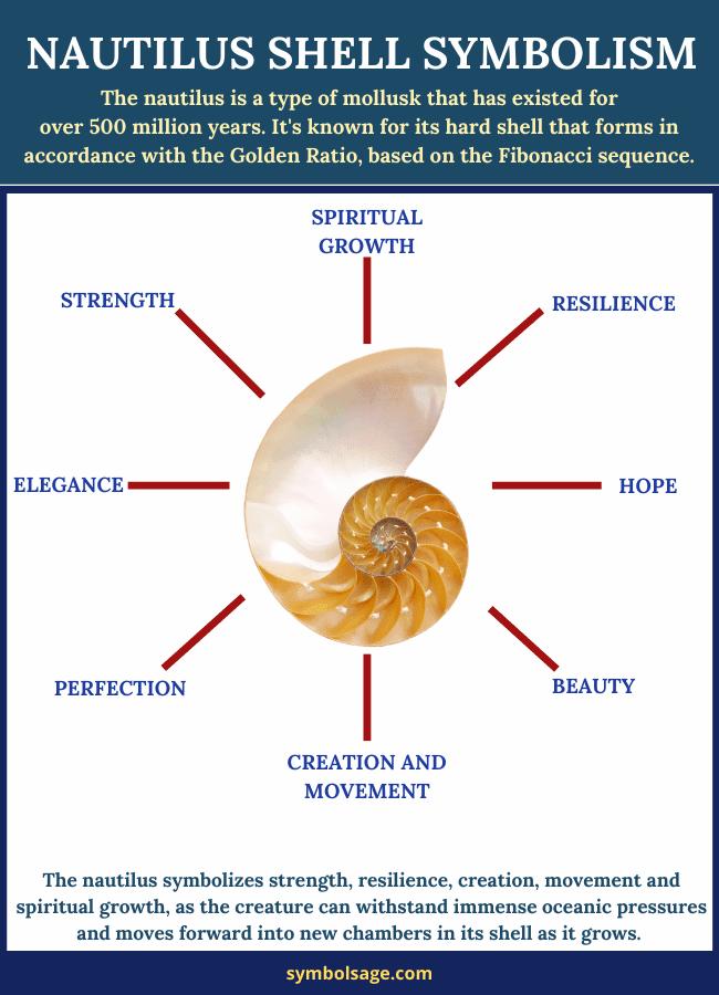 Symbolism of nautilus shell