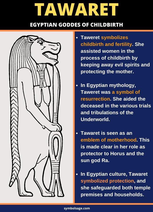 Symbolism of Tawaret Egyptian goddess hoppo