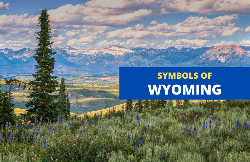Wyoming state symbols list
