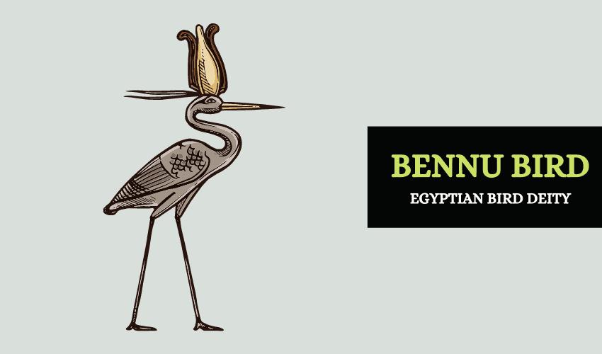 Bennu bird Egypt symbol