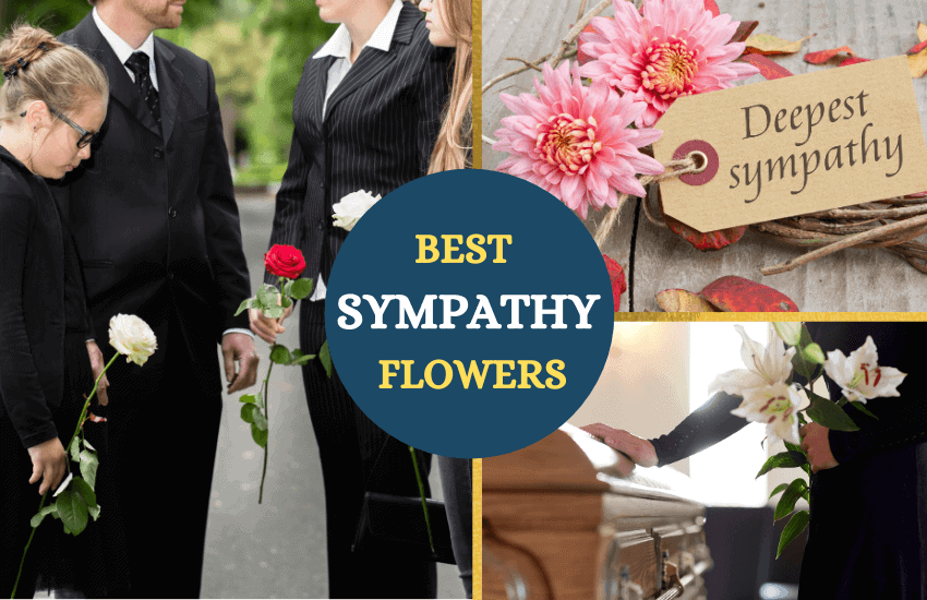 Best sympathy flowers
