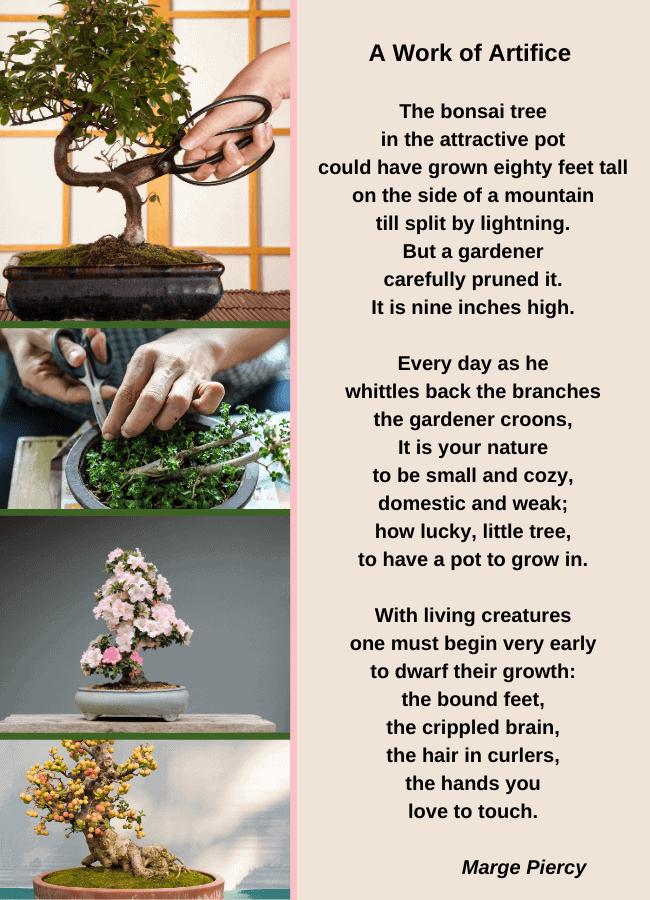 Poem bonsai