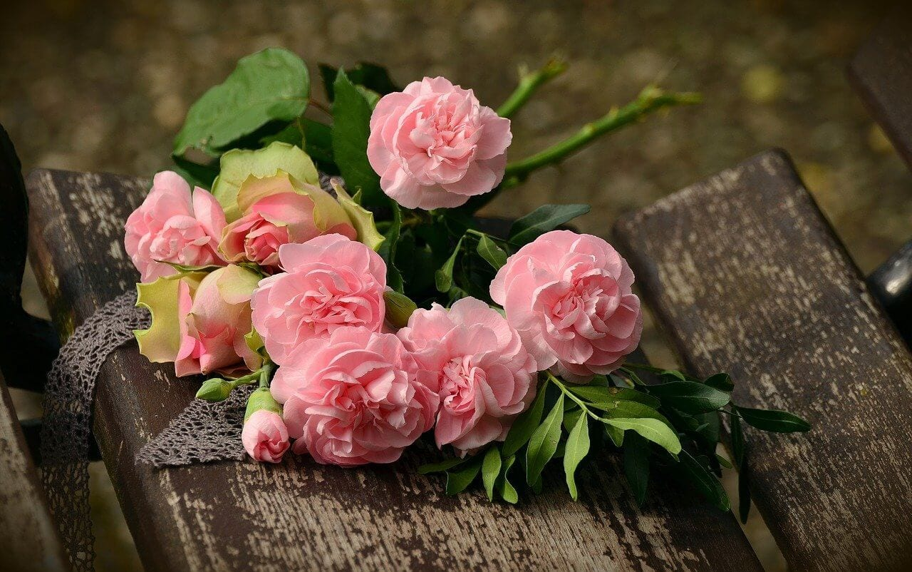 Roses best choice for anniversary