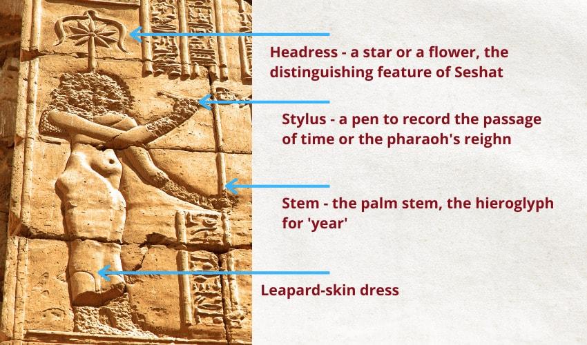 Seshat symbols depictions