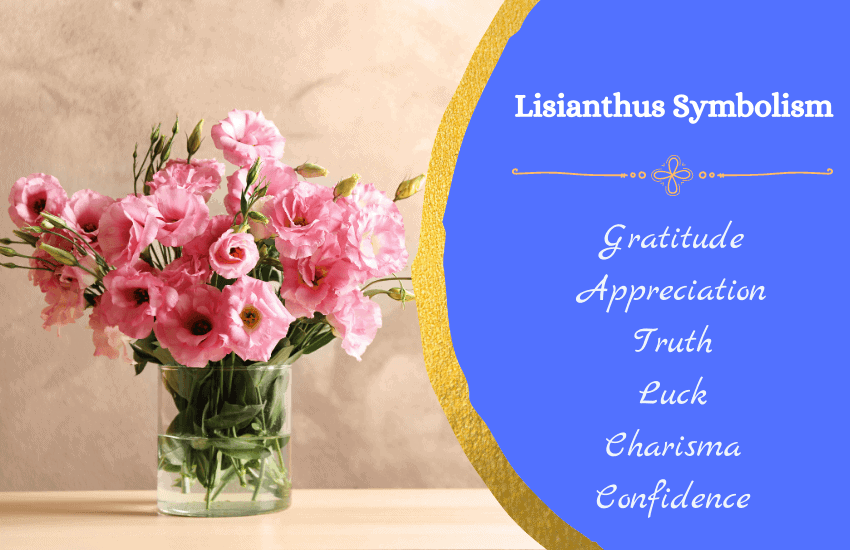 Symbolism lisianthus flower