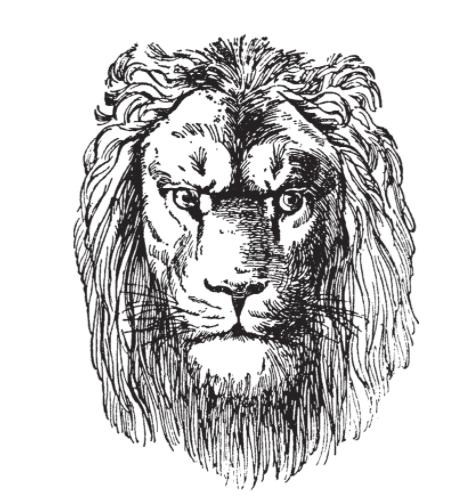 Lion's head tattoo