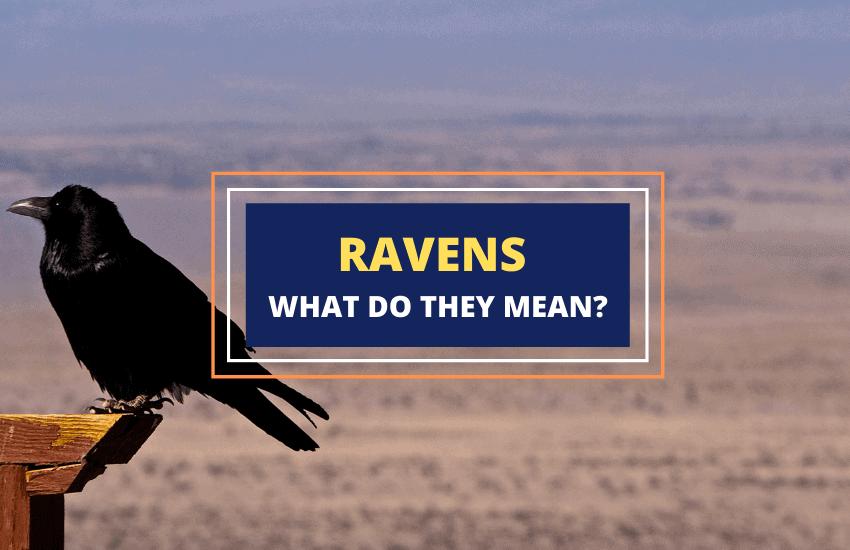 Ravens symbolism meaning