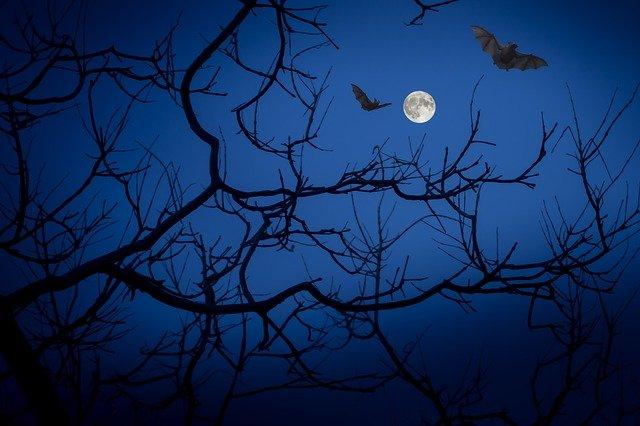 Negative symbolism of bats in western culture