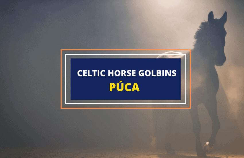 Puca Irish horse goblins mythology