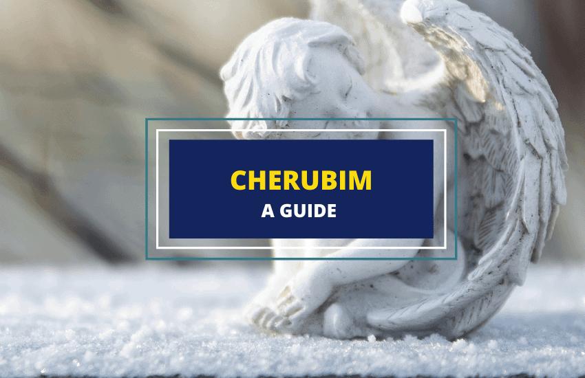Cherubim angels guide