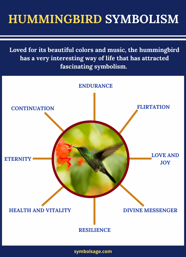 Hummingbird meaning and symbolism