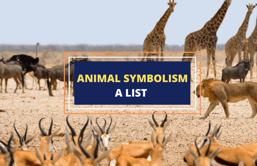 Animal symbolism and meaning