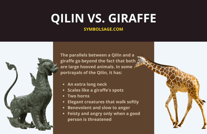 Qilin vs giraffe