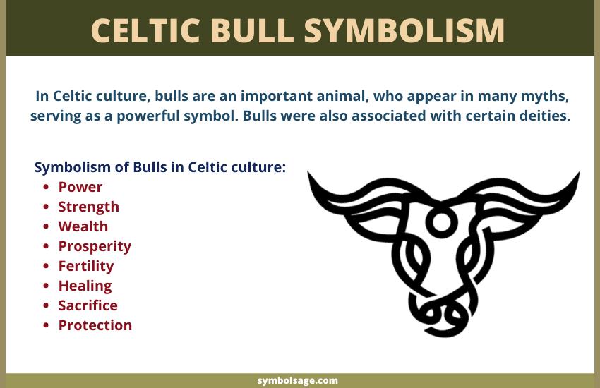 symbolism of Celtic bulls