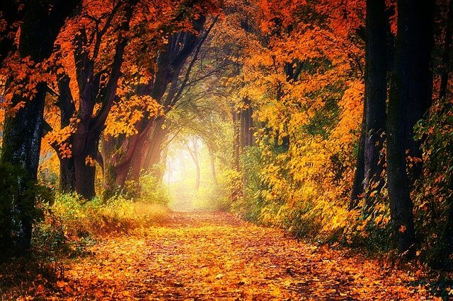 Symbolism of light